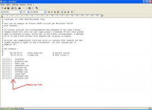 une-fois-termine-votre-fichier-hosts-doit-etre-comme-ceci