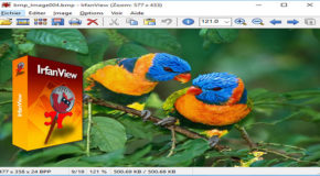 IrfanView V4.44 avec plugins – Portable