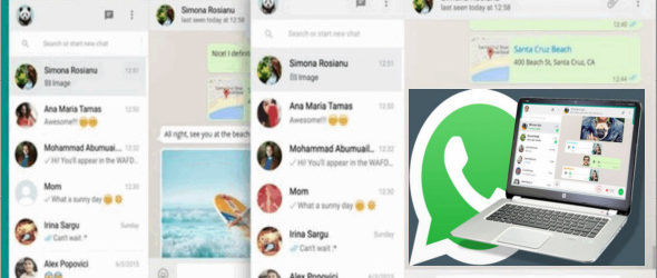 WhatsApp pour Windows 0.3.557