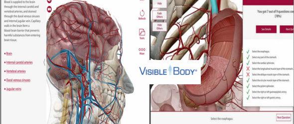 Human Anatomy Atlas v7.4.01