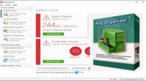 Reg Organizer 8.27 + Portable